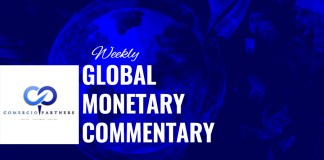 Global Monetary Commentary
