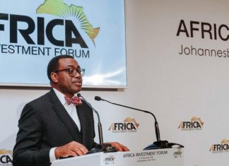 Ropeways, AfDB reap gains at Africa Investment Summit