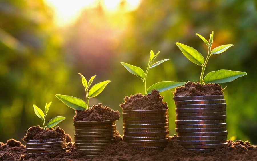 Why having a growth plan is important for your business