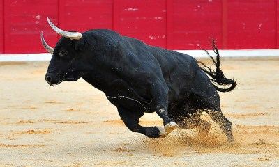 gtbank, stock market, Bulls dominate Nigerian bourse ASI up 0.74%, Investors gain N77 billion.