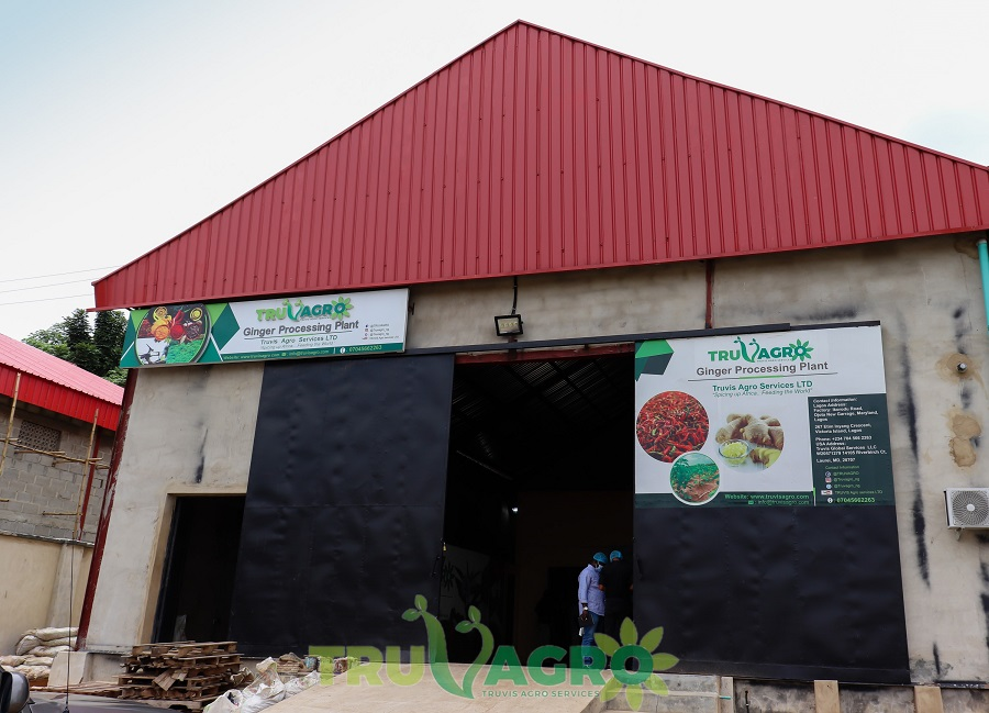 Repositioning Nigeria's agro export with ginger processing plant