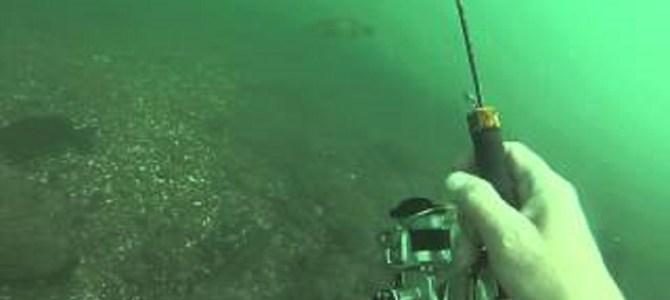 これは斬新!水中で魚を見ながらバス釣り!