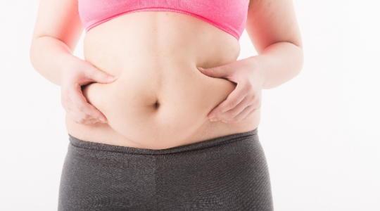 特定保健食品 内臓脂肪