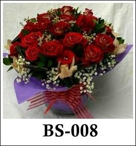 BS008