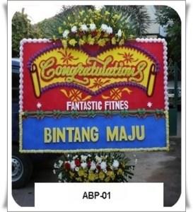 ABP01-1