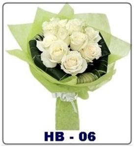 HB06-1