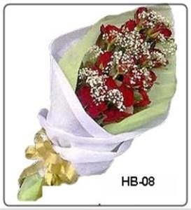 HB08-1