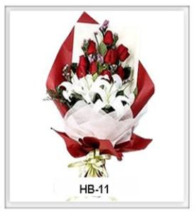HB11-1