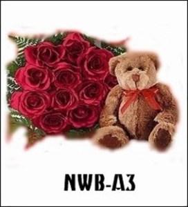 NWB03-2