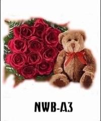 NWB03