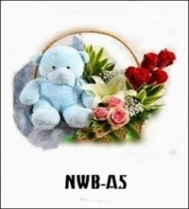NWB04-1