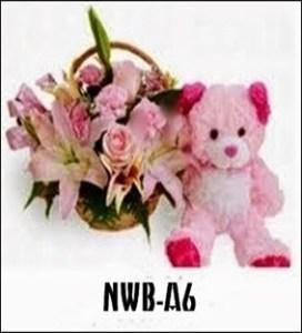 NWB05-1