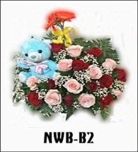 NWB07-1
