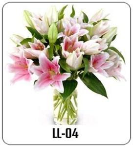 LL04-1