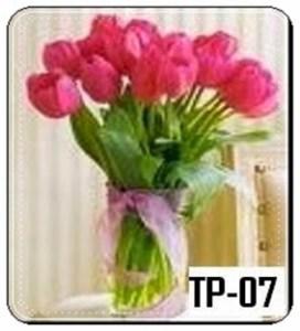 TV05-2