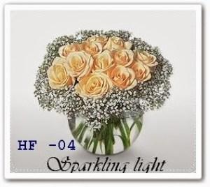 HF04-1