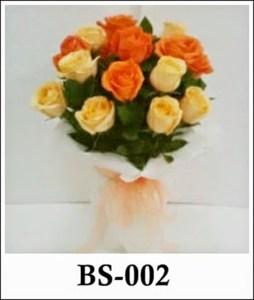 BS002