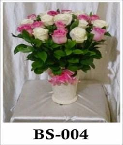 BS004