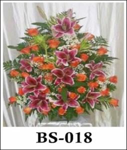 BS018