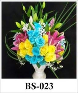 BS023