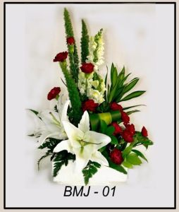 BMJ01