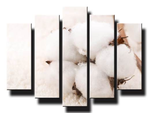 biela vata 5 dielny obraz