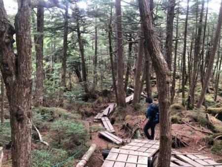 ハイキングコース難所