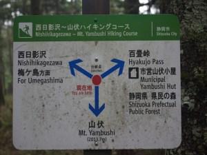 安倍奥の山伏岳に西日影沢ルートから登山