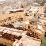 モロッコ フェズのタンネリ(なめし革)観光 Souk Dabbaghin
