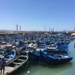 世界遺産 モロッコの港町エッサウィラへ観光