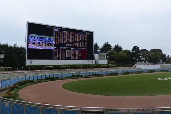 中山10レース 勝浦特別。このレースの枠順を見たときに、妙な胸騒ぎを感じました