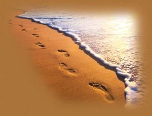 footprintsand