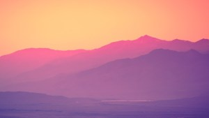 pinkhills