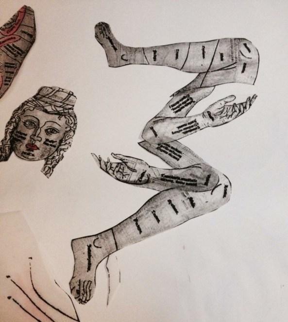 Anatomical Cut Outs - Tessa Berring