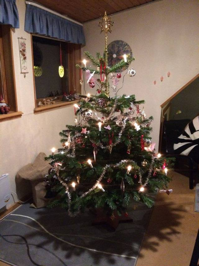 Christmas tree decorated and ready to be filled with dance and songs.