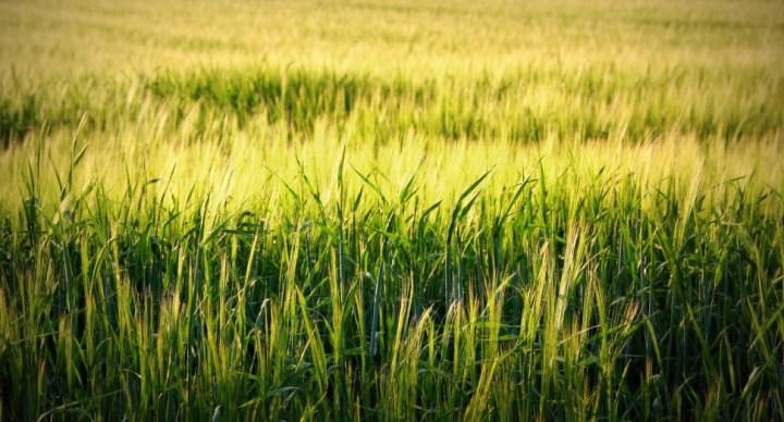 덴마크 환경보호청, 전국 환경 평가 지표 취합해 온라인 플랫폼에 공개