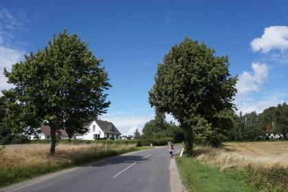 덴마크 여름날 (촬영: 안상욱)
