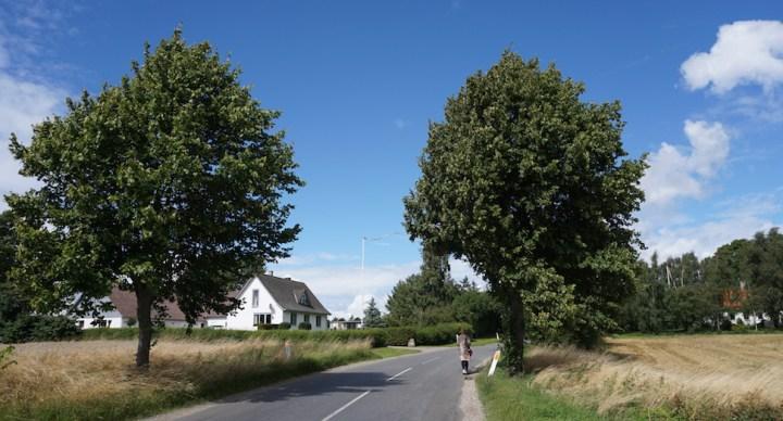 [날씨] 덴마크 여름 절정으로 치달아…낮 기온 30도 넘는다