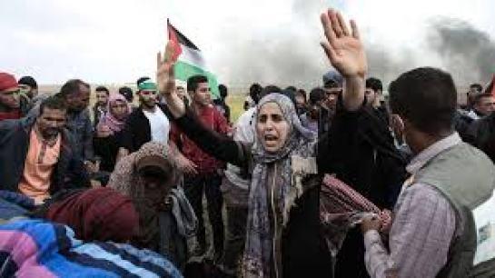gaza stop