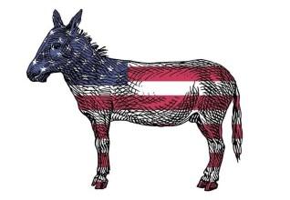 donkey-ass-081118