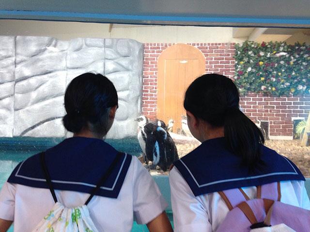中学校・平成27年度 自然教室