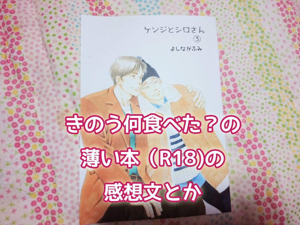 きのう何食べた?の番外編の薄い本『ケンジとシロさん』シリーズのあらすじ・買い方と③の感想