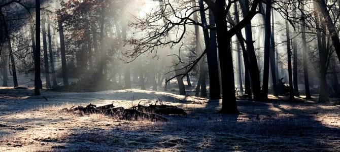 Legendy litewskie: Wajdelotka