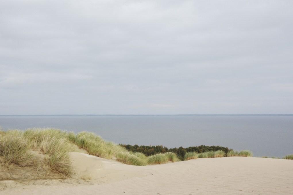 rezerwat Nagliai, mierzeja kurońska, litwa