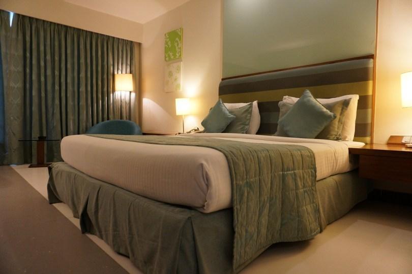 hotel litwa