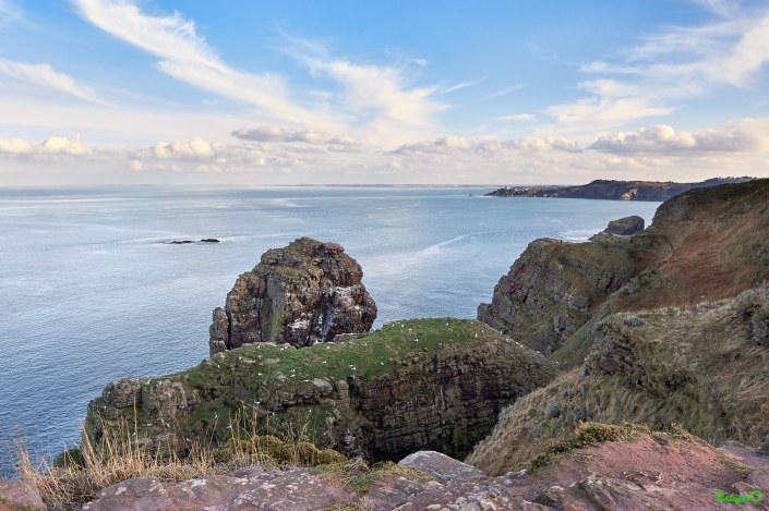 nature bretonne - Rocher de la fauconnière au Cap Fréhel