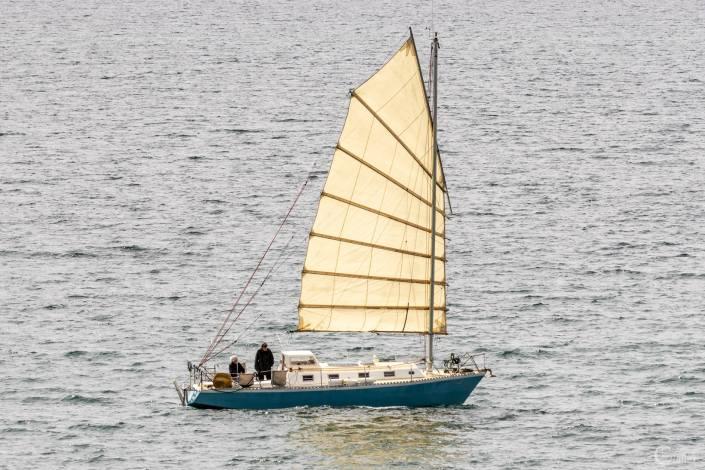 Crozon : voilier dans la baie