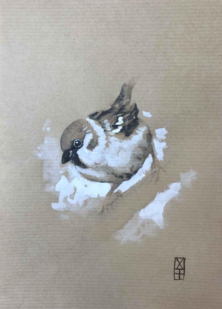 103--moineau-aquarelle