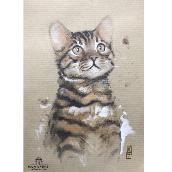 Chattentif -chat attentif- dessin original sur papier kraft par Roland Perret - série des chats