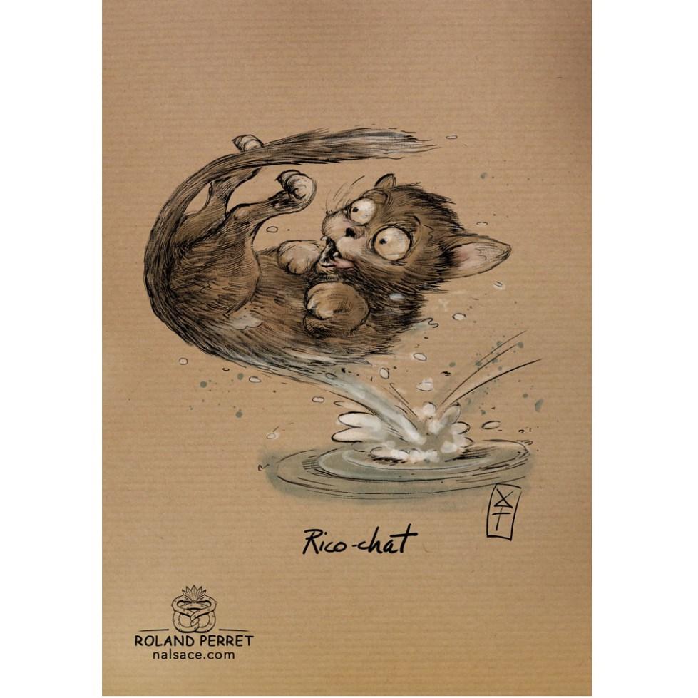 Ricochet de chat par Roland Perret, jeu du Chat-llenge